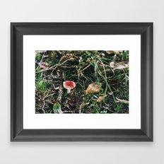 A Little Red Framed Art Print