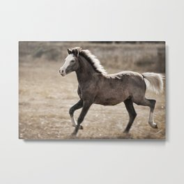 Young One Metal Print