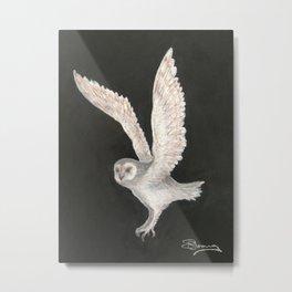 Sooty Owl Metal Print