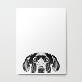 Great Dane Dog Metal Print