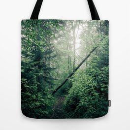 Fallen Tree in Misty Forest Tote Bag