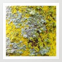 moss Art Prints featuring Moss! by eddiek3