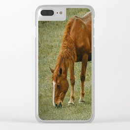 Horse And Foal Clear iPhone Case