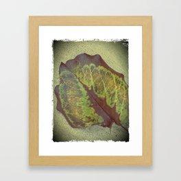 ode to a leaf Framed Art Print