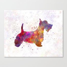 Scottish Terrier in watercolor Canvas Print