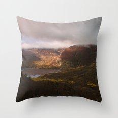 Window Throw Pillow