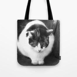 Sleepy Cat Tote Bag