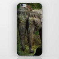 elephants iPhone & iPod Skins featuring Elephants  by Guna Andersone & Mario Raats - G&M Studi