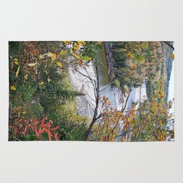 Winding River in Autumn Rug