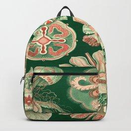Ernst-haeckel-Discomedusae Backpack