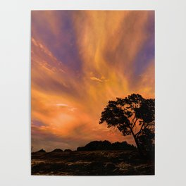 Color Of Evening Poster