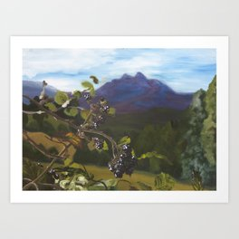 Blackberries Under Sleeping Beauty Art Print