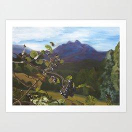 Blackberries Under Sleeping Beauty Art Print