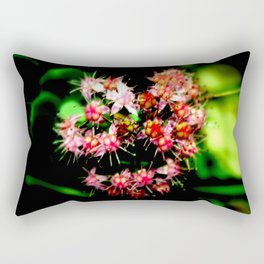 Cacti (Cactaceae) Rectangular Pillow