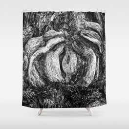 Shapes in wood. Shower Curtain