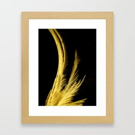 Crest of the Cockatiel Framed Art Print