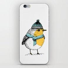 Winter bird iPhone & iPod Skin