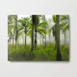Tropical Forest Palm Trees Coconut Trees Metal Print