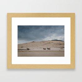 Wild Horses on the Coast Framed Art Print