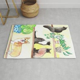 Cats, Corgi, Plants on Shelves Rug