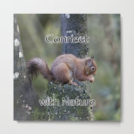 Connect with Nature Metal Print
