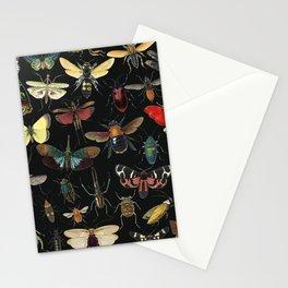Lovely Butterfly Black Stationery Cards