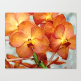 Glowing Orange Vanda Orchid Canvas Print