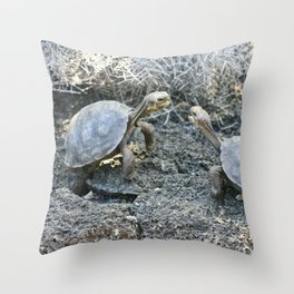 Baby giant tortoises acting tough Throw Pillow