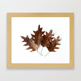 Autumnal Love Framed Art Print