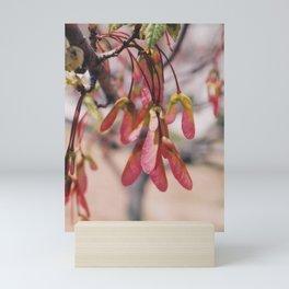 Maple Samaras Mini Art Print