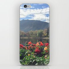 What a view iPhone & iPod Skin