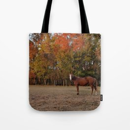 Where is My Horse Hay? Tote Bag