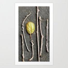 Leaf and twigs Art Print