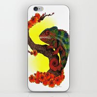 chameleon iPhone & iPod Skins featuring Chameleon by Allyson Travis