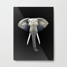 Elephant Portrait Metal Print