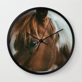 crystal the pony Wall Clock