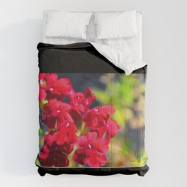 Seeing Red Comforters