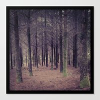 "narnia Canvas Prints featuring Auntie's ""Narnia"" by Art by Christina MC"