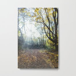 Glittering Woods Metal Print