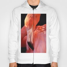Cuban Flamingo Hoody