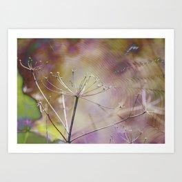 Spiderweb :: Come Hither Art Print