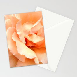 Champagne Rose Stationery Cards