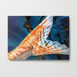 Tail End Metal Print