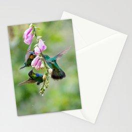 Three Costa Rican Hummingbirds in the Rain Stationery Cards