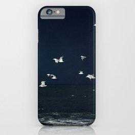 Sea - Evening Flight iPhone Case