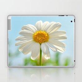 Daisy 0143 Laptop & iPad Skin
