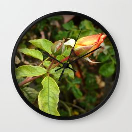 Rose Cycle (2019) from Roberta Winters Photography Wall Clock