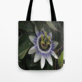 Delicate and Beautiful Passiflora Flower Tote Bag