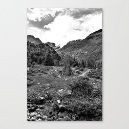 garden further alps kaunertal glacier tyrol austria europe black white Canvas Print
