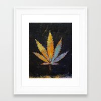 cannabis Framed Art Prints featuring Cannabis by Michael Creese